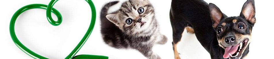 Логотип Ветеринарная Лечебница - Ветеринарные услуги, Город